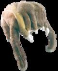 Half-Life 2 Critters: Хедкраб